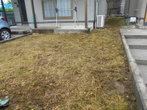 庭先の除草作業後