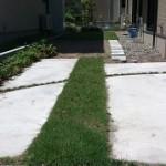 芝生の草取り後
