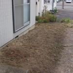 新潟市西区草刈り後1