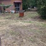 東区草刈り作業後2