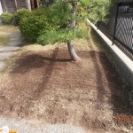 芝生を剥ぐ2